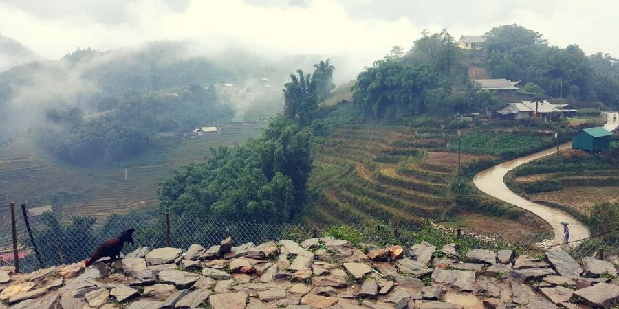 Solo travel to Sapa, Vietnam is easy and fun for people who travel by themselves