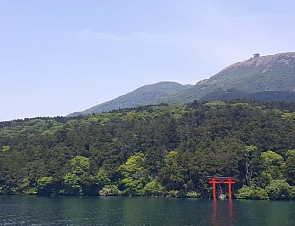 Learn how you can see the best attractions from Tokyo to Hiroshima in my one month in Japan itinerary.
