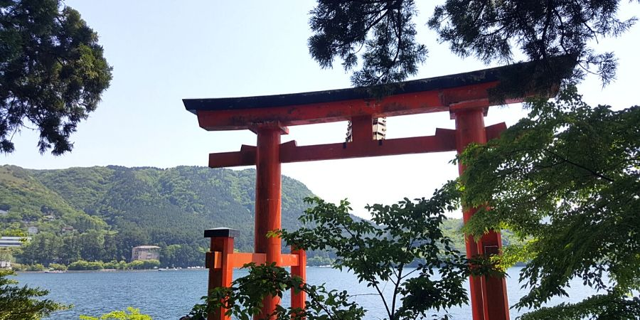 There are so many things I wish I knew before going to Japan. Learn all my best tips for travelling to Japan.
