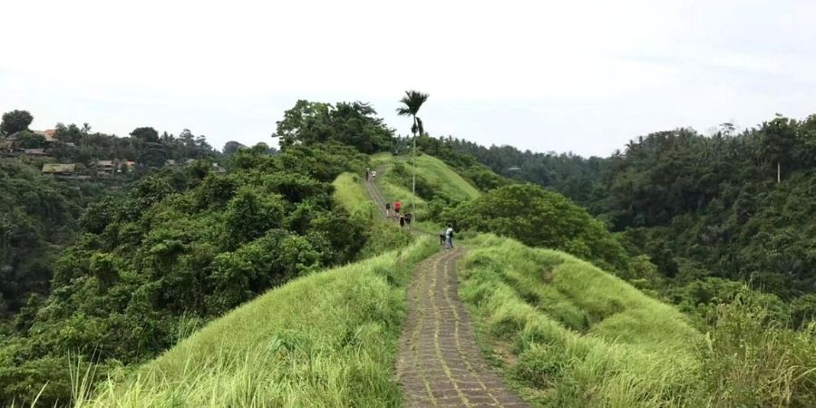 Campuhan Ridge Walk is an easy walk, but it is best to go early or late in the day