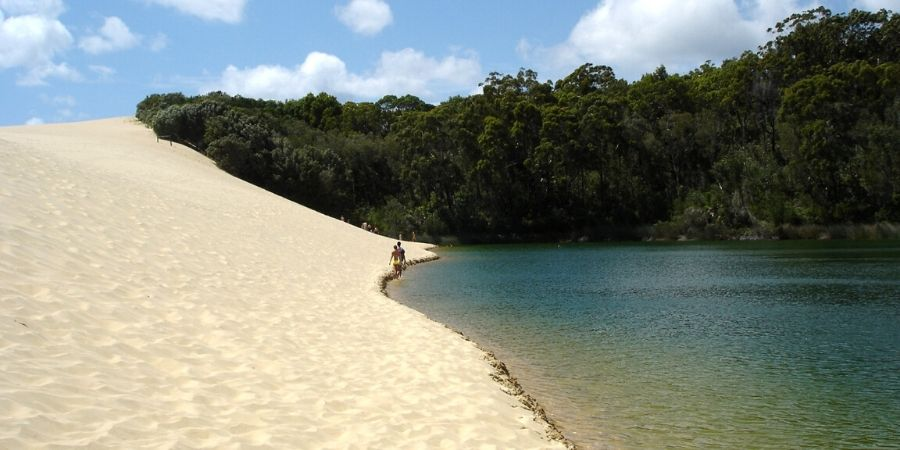 Visit the dunes around Lake Wabby, the deepest freshwater lake on Fraser Island
