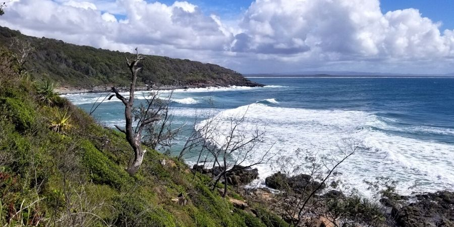 Noosa is the perfect spot for sun, surf and adventure!