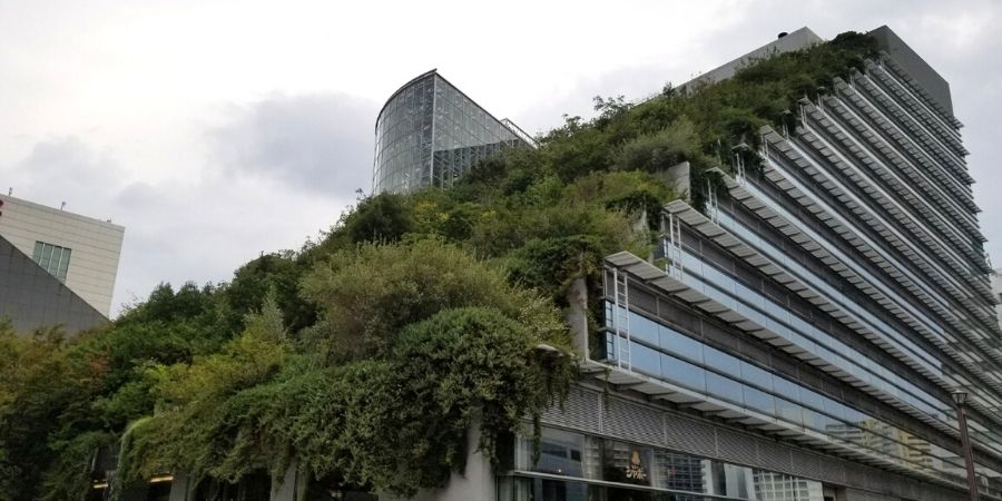 The ACROS Fukuoka is designed to look like a 15-story hanging garden.