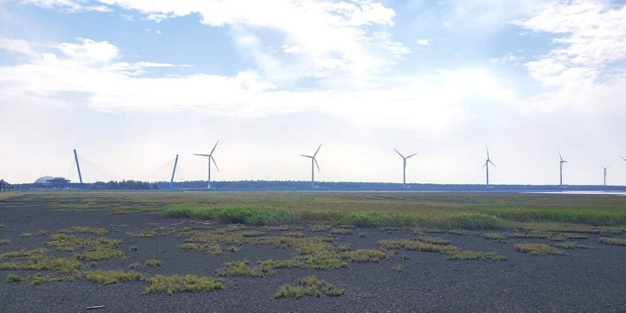 Wind turbines can be seen in a distance at Gaomei Wetlands.