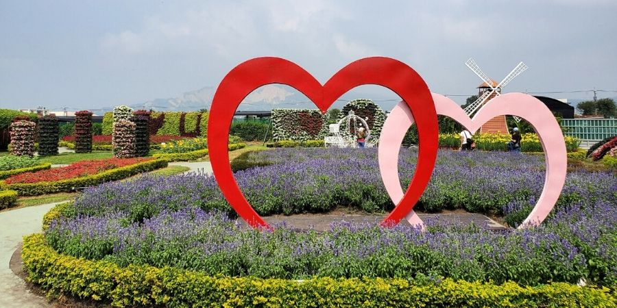 Many photography backdrops are placed throughout the flower farm for picture-perfect moments.