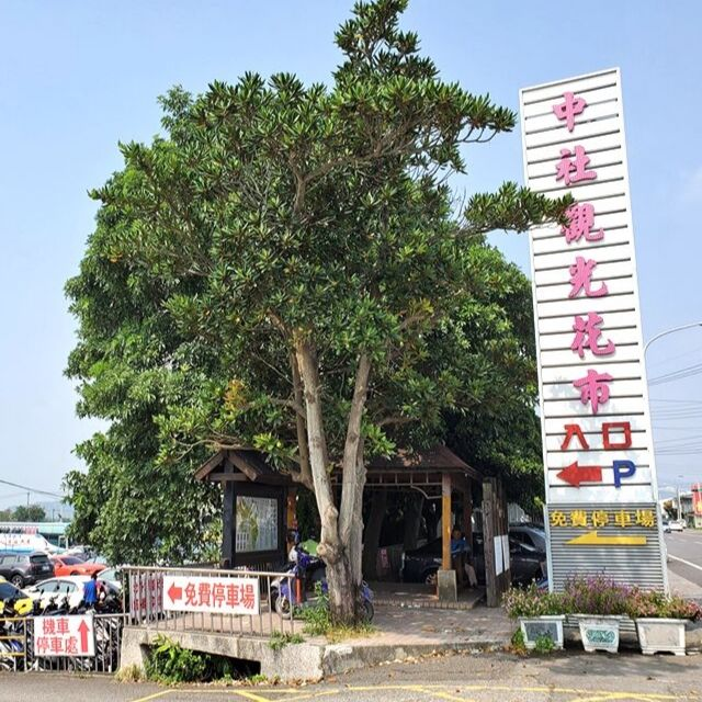 Once you reach this sign, turn into the small street and you will find Zhongshe Flower Market.