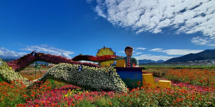 The Businessman is surrounded by a sea of colourful flowers and a gorgeous backdrop.
