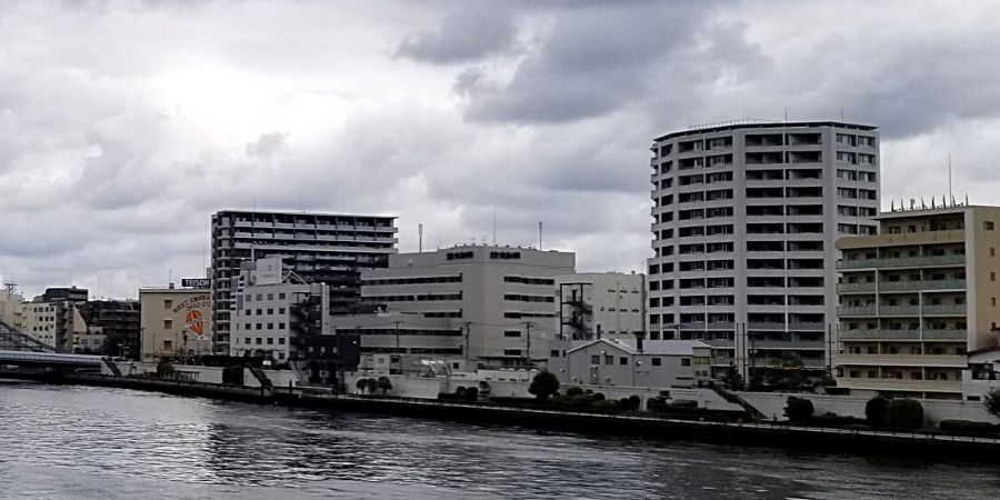 Lyuro Tokyo Kiyosumi is the middle white building along Sumida River