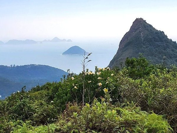 High Junk Peak hike is one of the most challenging hikes in Hong Kong